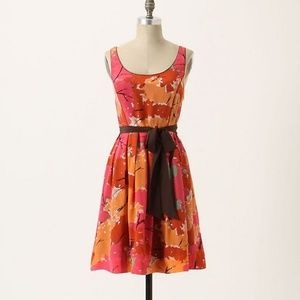 Anthropologie Changing Canopy Dress We Love Vera